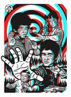 Enter the Dragon 3D PLAKAT